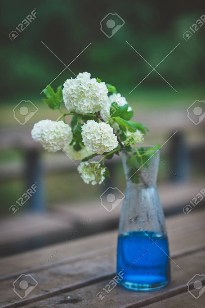 Bouquet Of White Hydrangeas In Glass Vase With Blue Water On Stock
