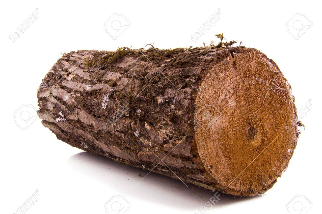 Stock Photo - Wood for the fireplace isolated over white - Wood For The Fireplace Isolated Over White Stock Photo, Picture