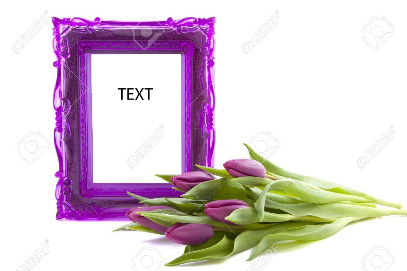 Marco De Púrpura Con Los Tulipanes De Color Púrpura Sobre Fondo ...