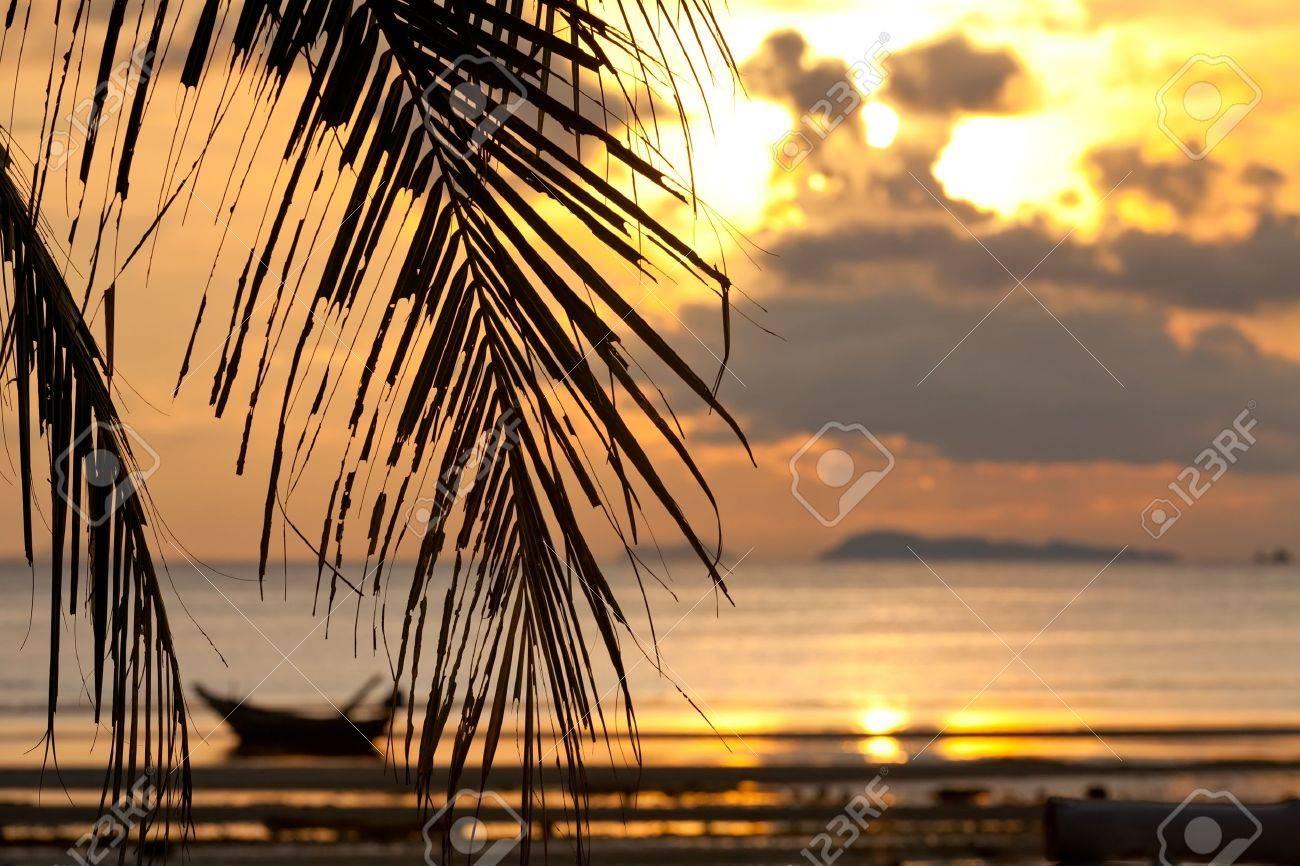 Coucher De Soleil Avec Palmier En Face Et En Bateau Dans La Mer
