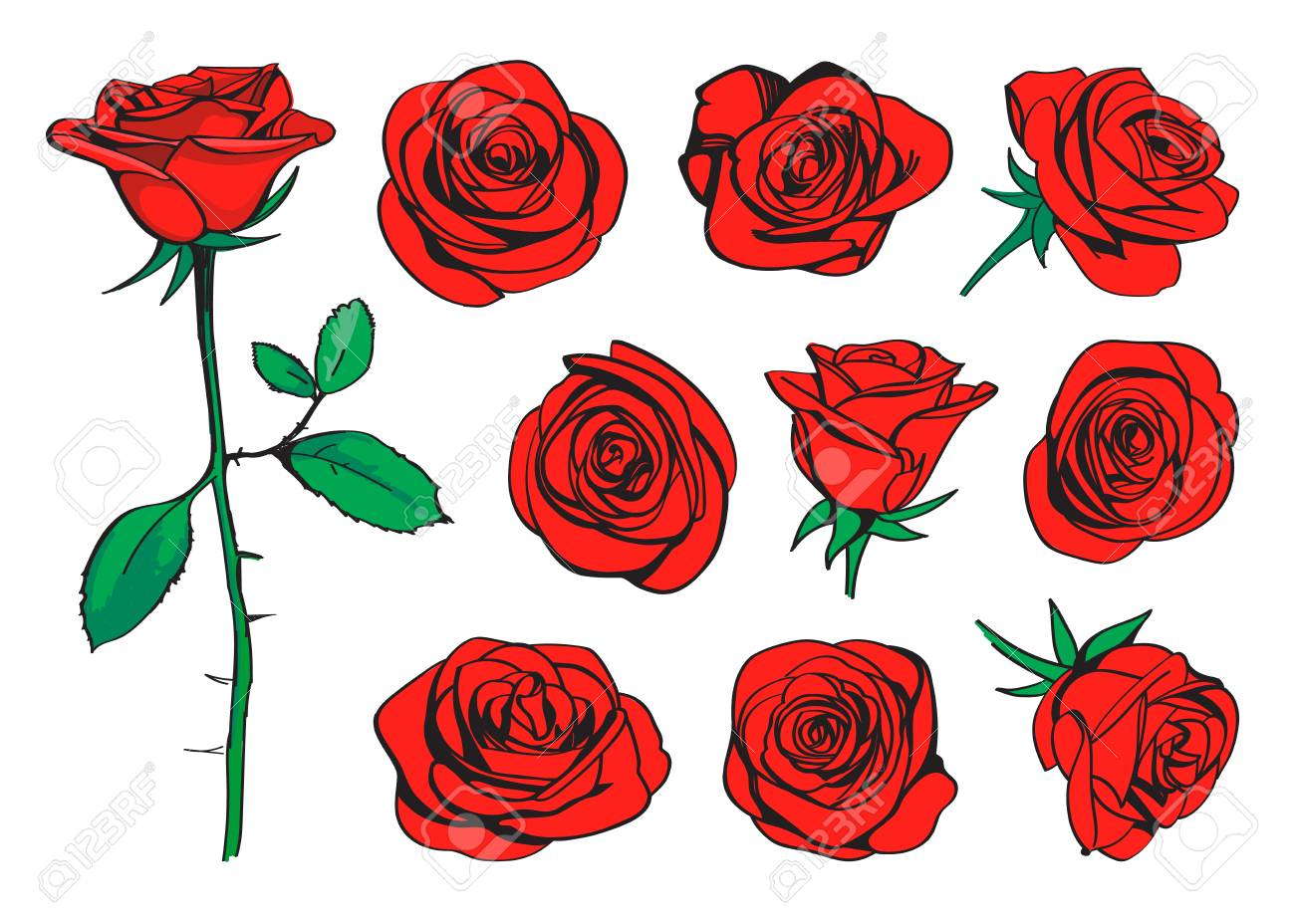 Red Roses Hand Drawn Color Set. Black Line Rose Flowers ...
