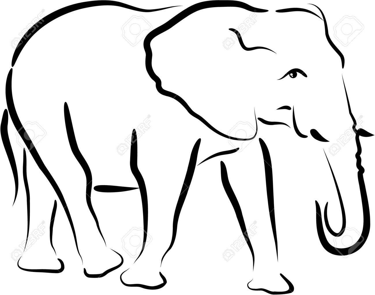 elephant - 4656813
