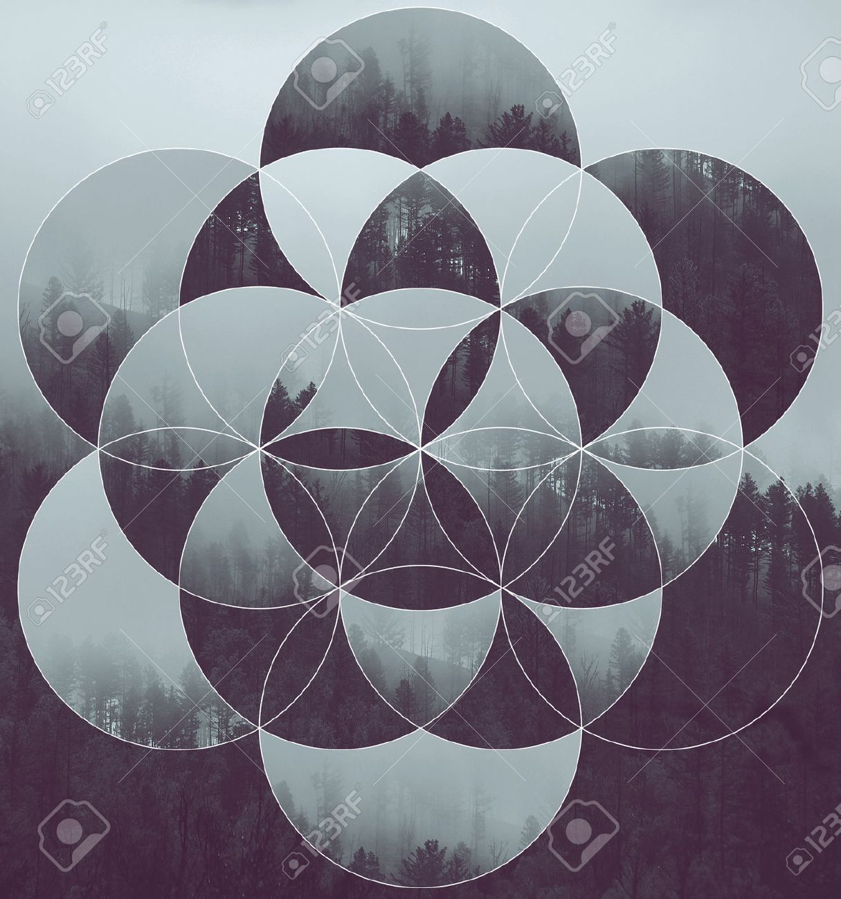 Résumé de fond avec l'image de la forêt et la fleur de la vie. L'harmonie, la spiritualité, l'unité de la nature. Collage, mosaïque. Banque d'images - 51110810