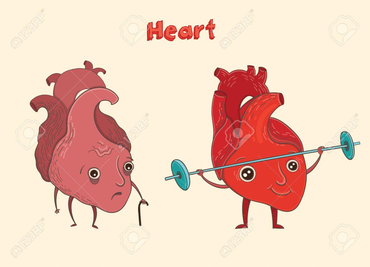 Ilustración Vectorial De Dibujos Animados De Corazón Humano Sano Y ...