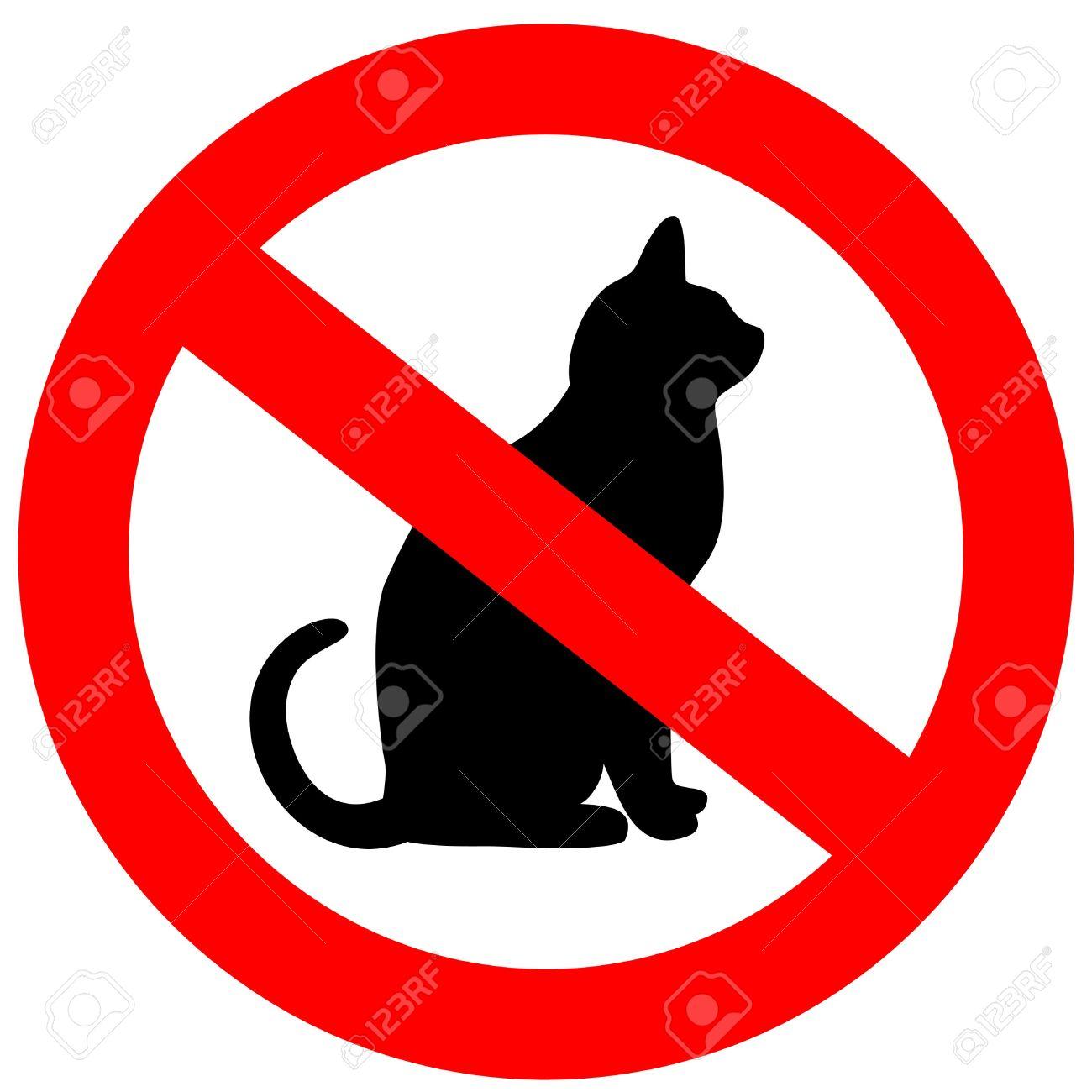 No cats Stock Photo - 6388839
