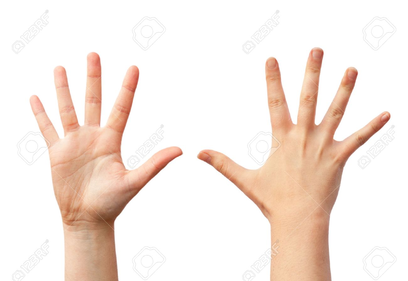 two empty human hands front and back view stock photo picture and