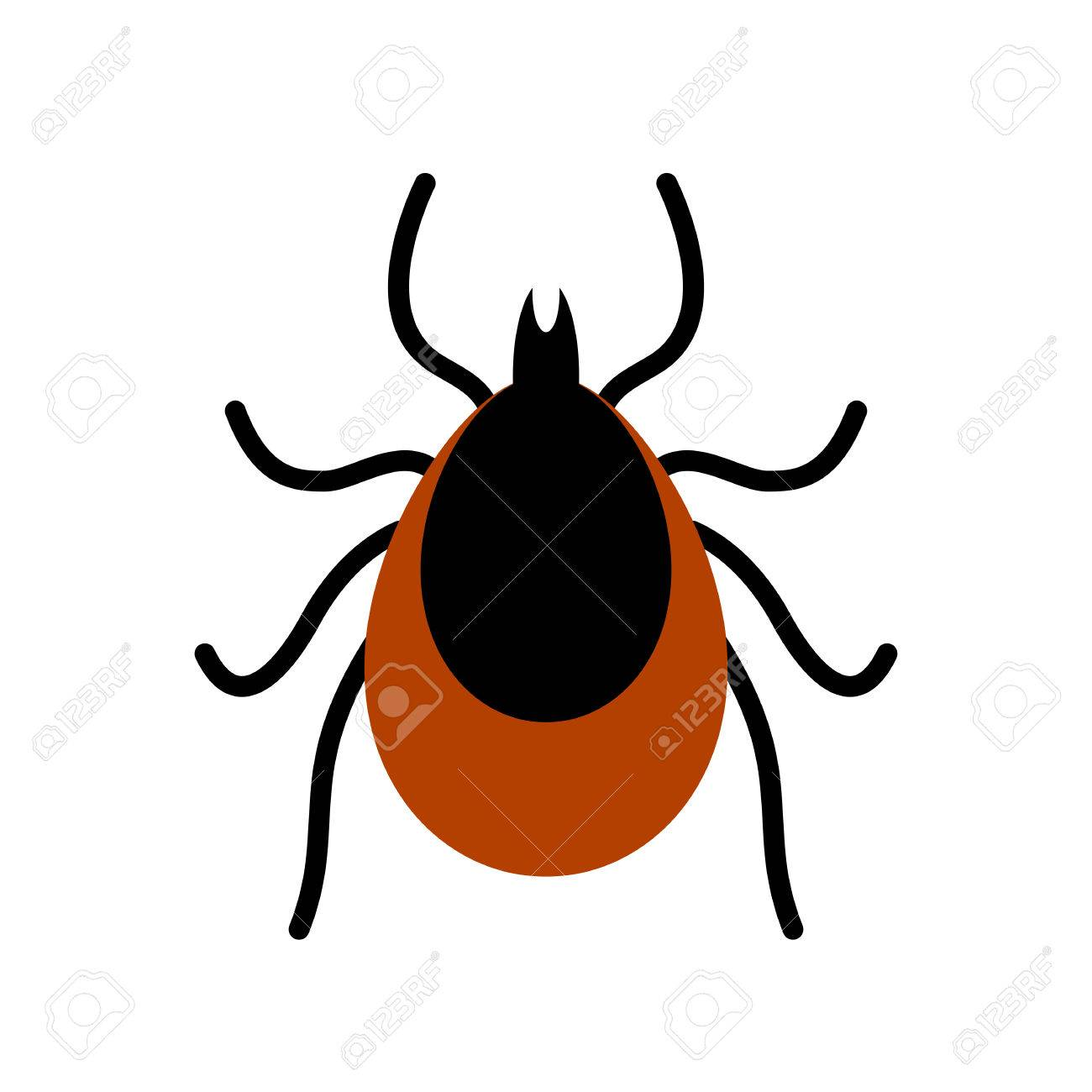 Mite Tick Vector Icon Royalty Free Cliparts, Vectors, And Stock ...