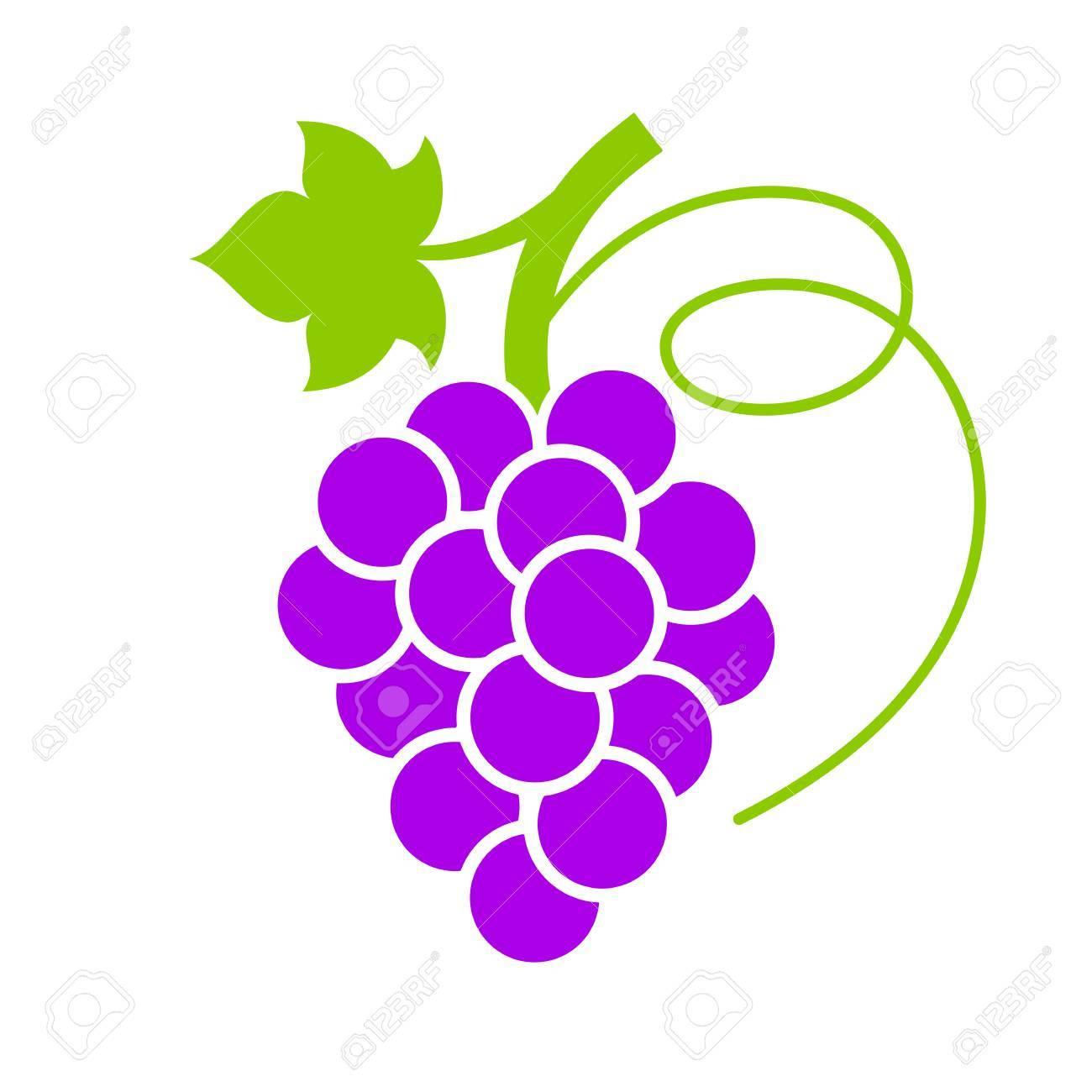 ripe violet grape vector icon royalty free cliparts vectors and rh 123rf com graph vectors desmos grapes vector black and white