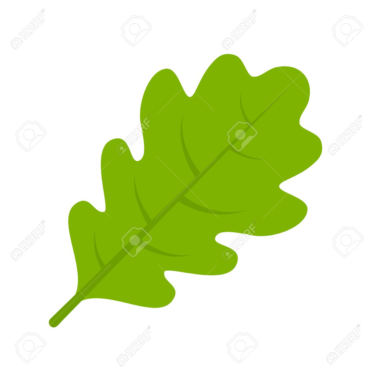 green oak leaf vector illustration royalty free cliparts vectors rh 123rf com bur oak leaf vector oak leaf wreath vector