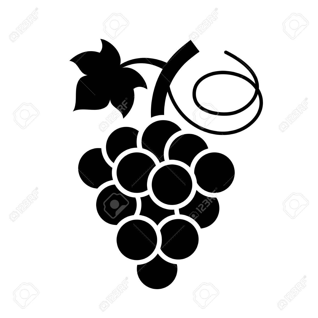 bunch of grapes vector icon royalty free cliparts vectors and rh 123rf com grape vector png graph vectors desmos
