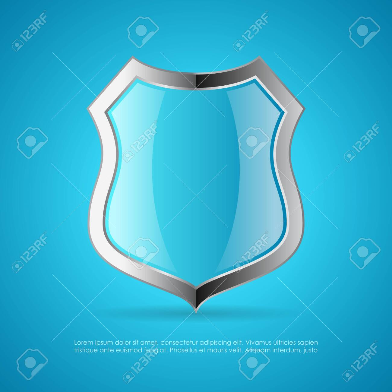 Shield vector icon on blue background - 134791974