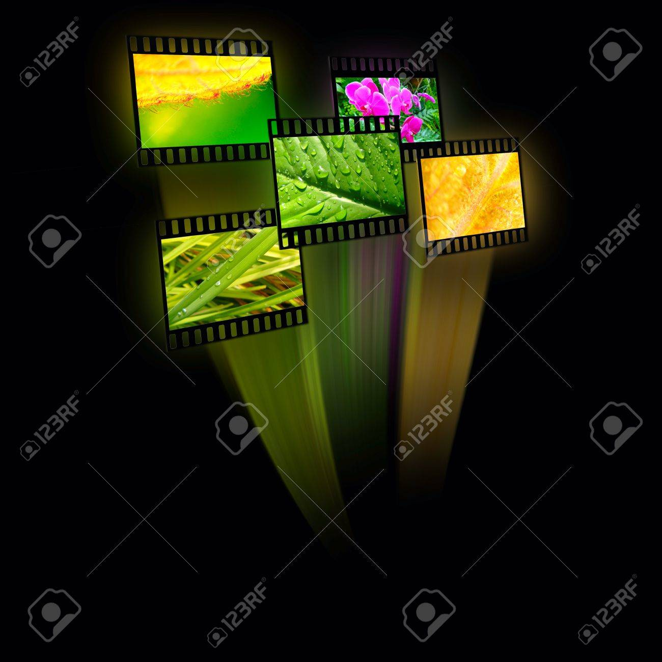 Film frames with color pictures (nature) on black background. - 12244731