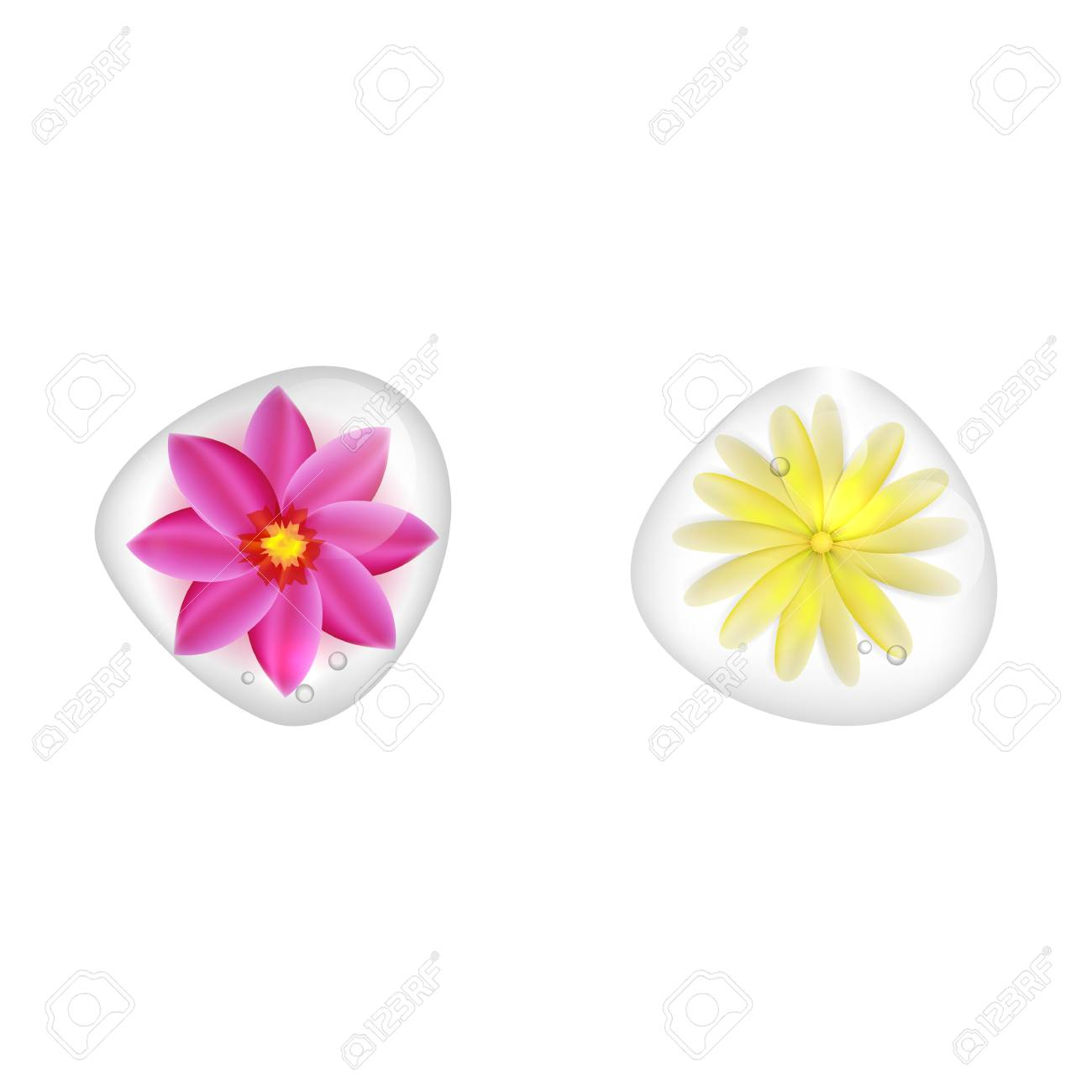 Realistic Yellow And Pink Flowers Under Clear Water Dropp