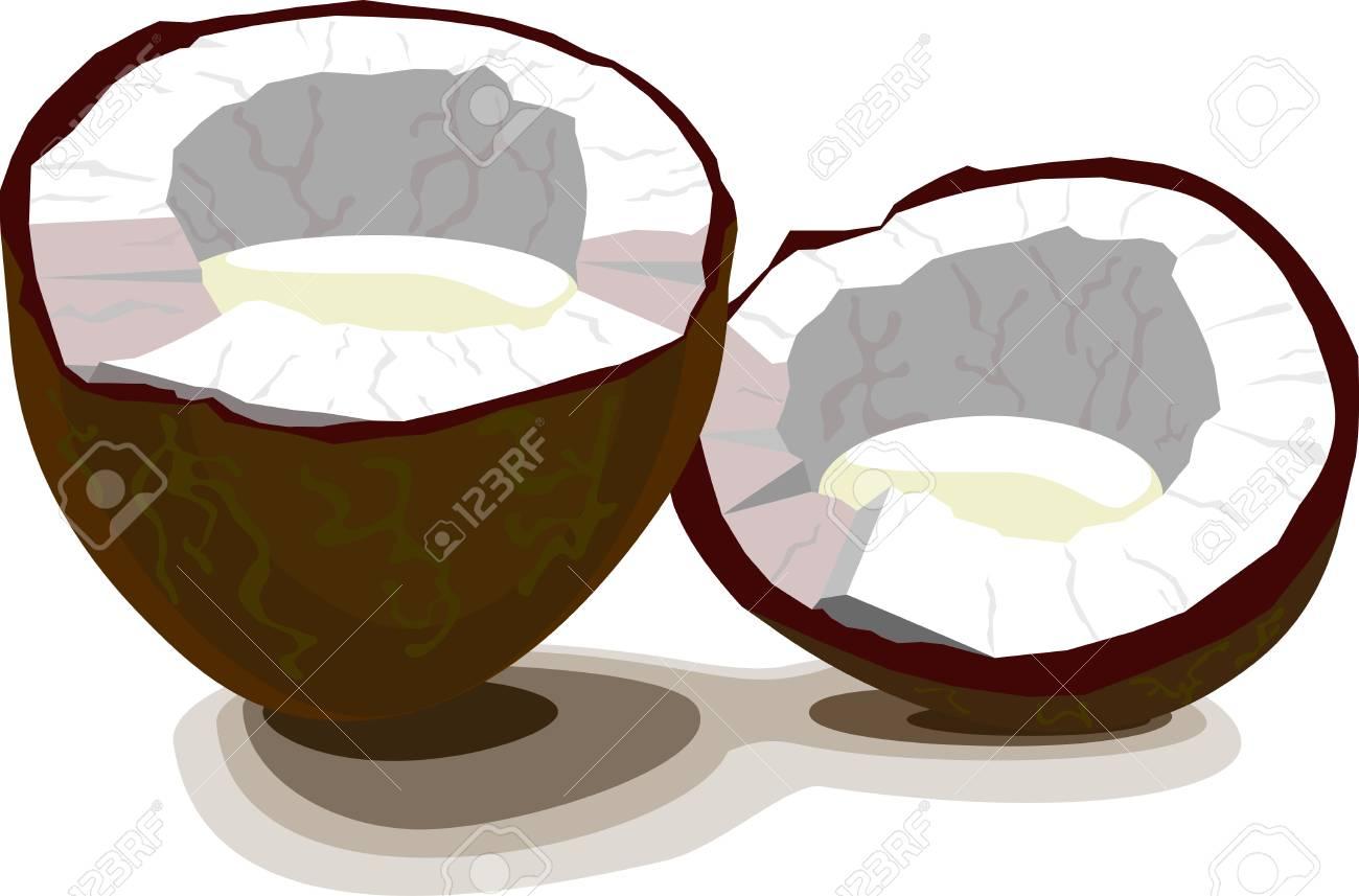 coconut half Stock Vector - 16246830