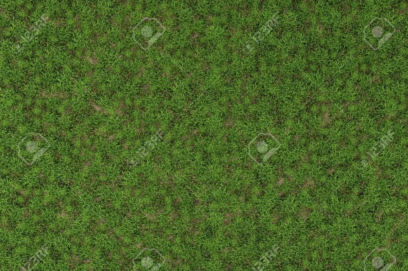 wild grass texture. High Resolution Of Wild Grass Texture - 3D Rendering Stock Photo 36103161