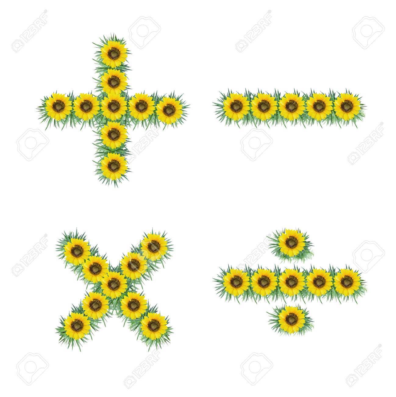Symbol Of Sunflower Isolated On White Background Stock Photo