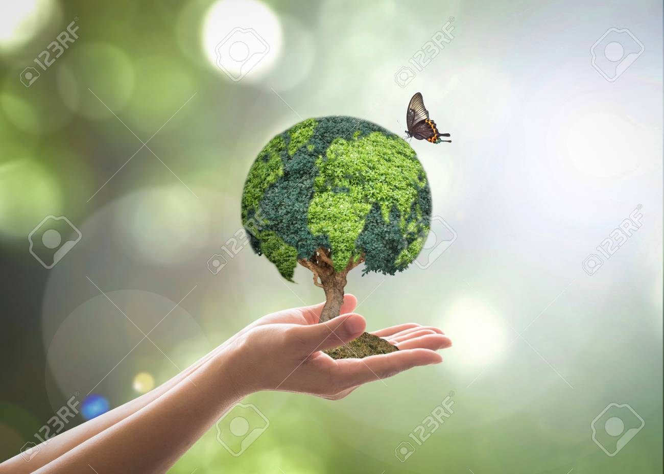 Green globe tree on volunteer's hand for sustainable environment and natural conservation in CSR concept - 112510958