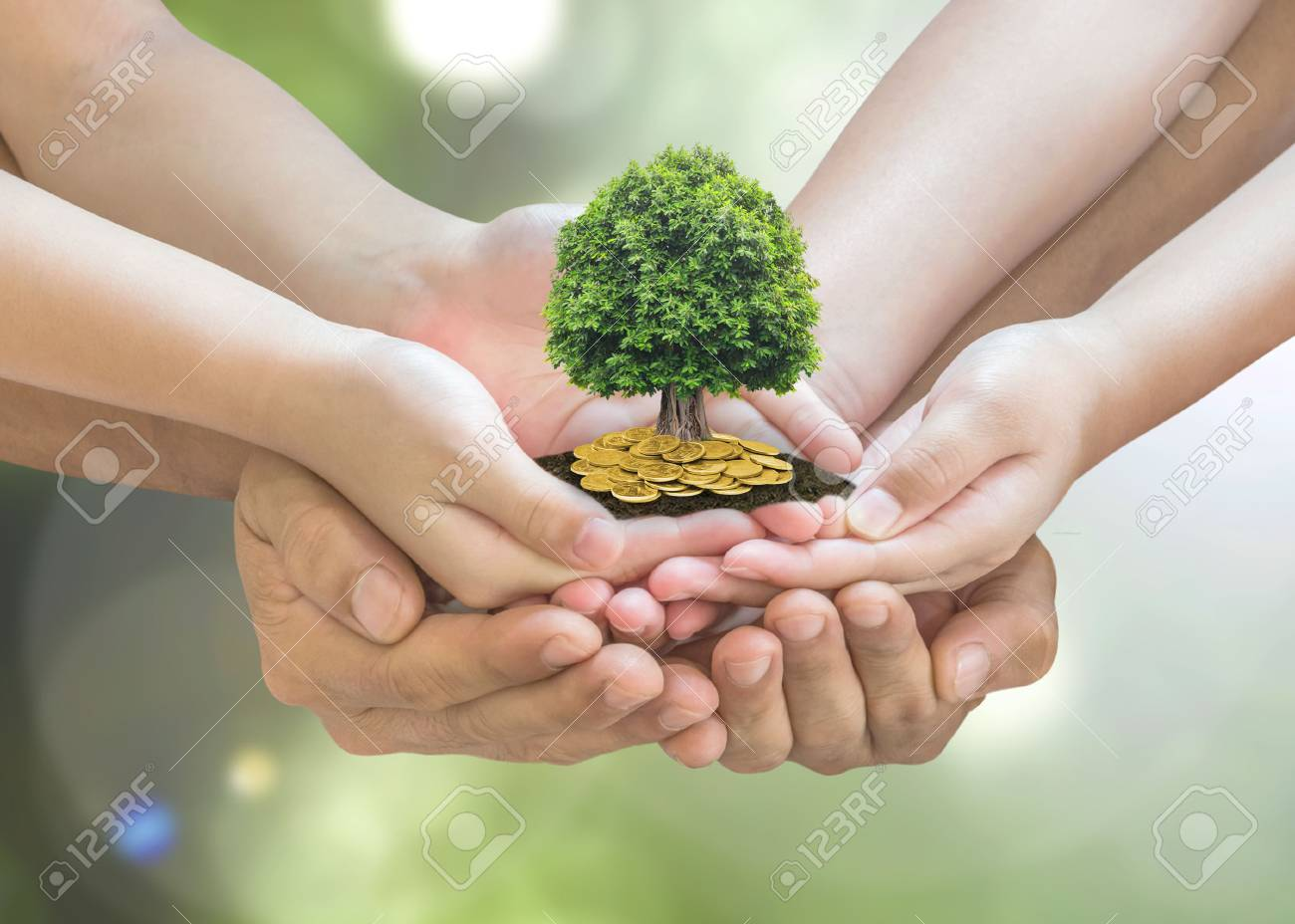 Retirement planning and family investment concept with wealthy tree growing on parent -children's hands - 112436559