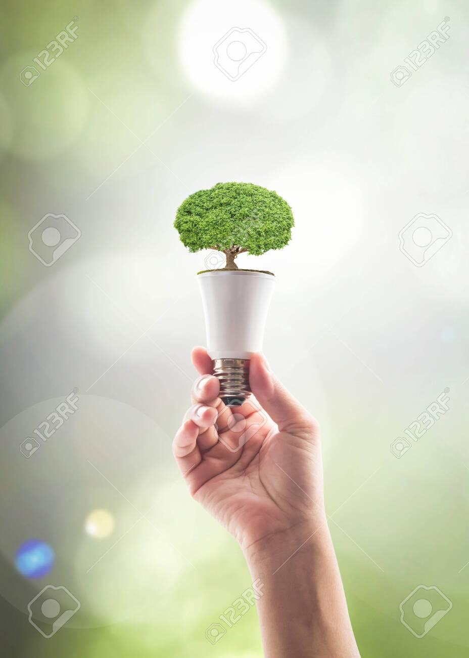 Saving energy by eco friendly creative innovative technology design concept idea - 116067472