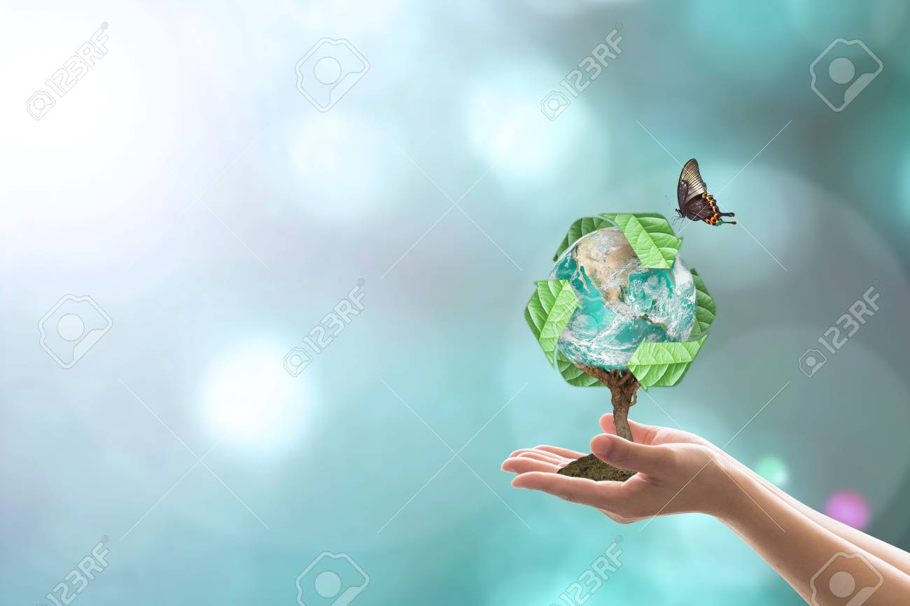 Waste recycle management, energy saving awareness, ecological sustainability and tree planting concept - 116284377