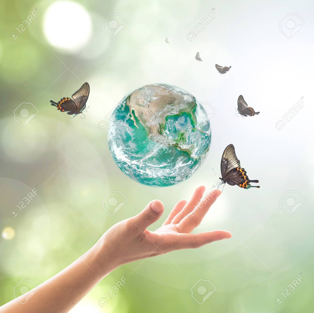 World environment day, sustainable ecology and environmental friendly concept with green earth planet on volunteer's woman hands. - 121249360
