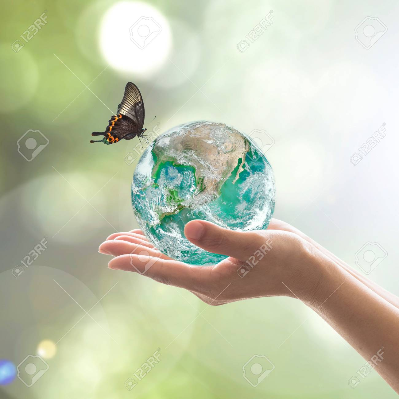 World environment day and environmental friendly concept with green earth on volunteer's hands. - 121252951