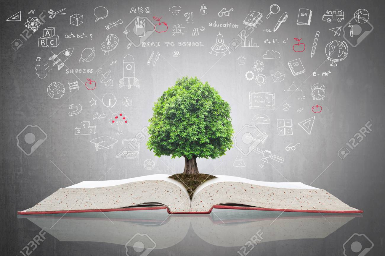 Tree of knowledge growing on open textbook with doodle for educational investment and success concept - 124855725