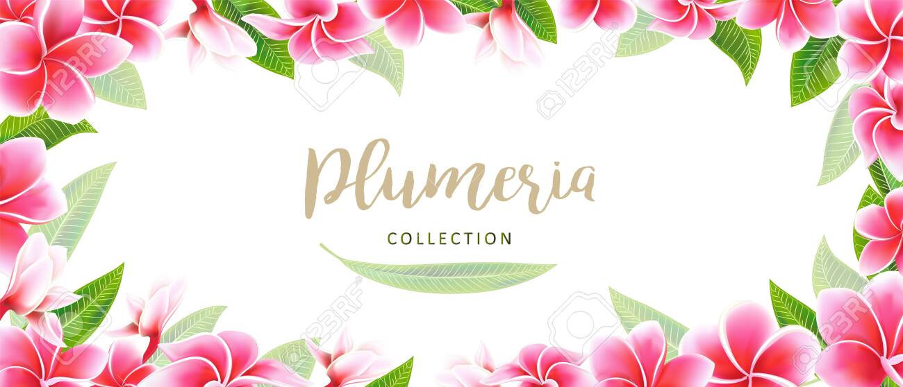 Wedding Invitation Card Floral Pink Plumeria Frame Bouquet With