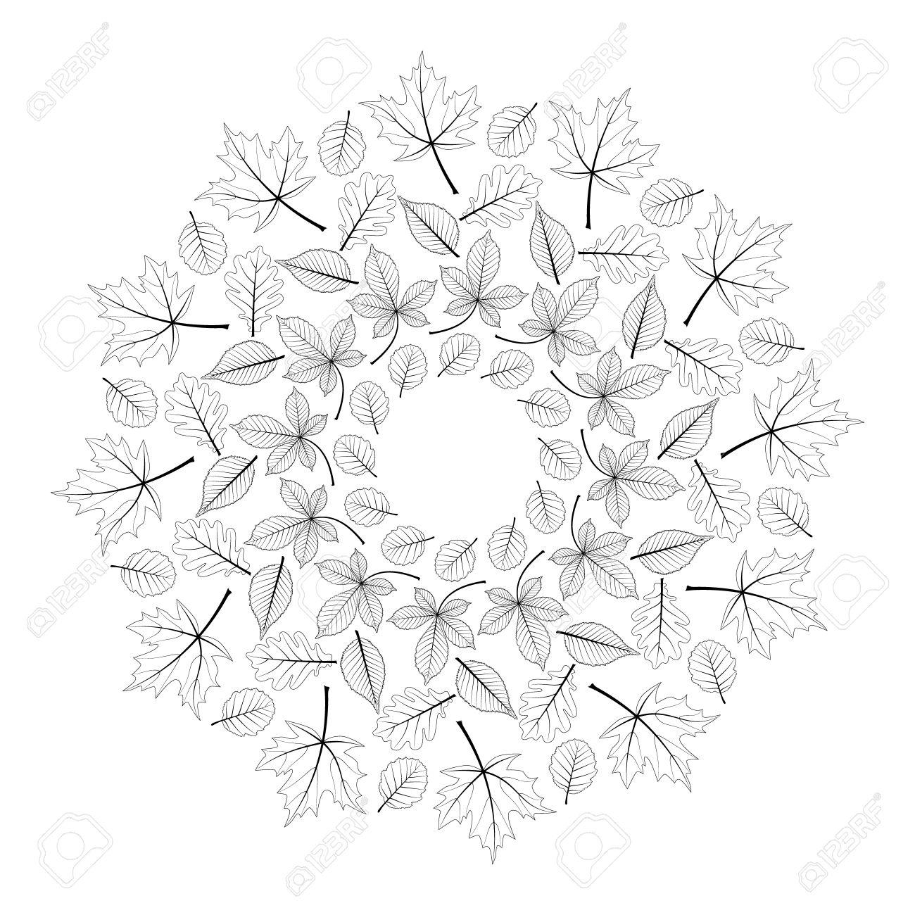 Coloriage Arbre Hetre.Vector Noir Et Blanc Rond Automne Mandala Avec Feuilles D Erable
