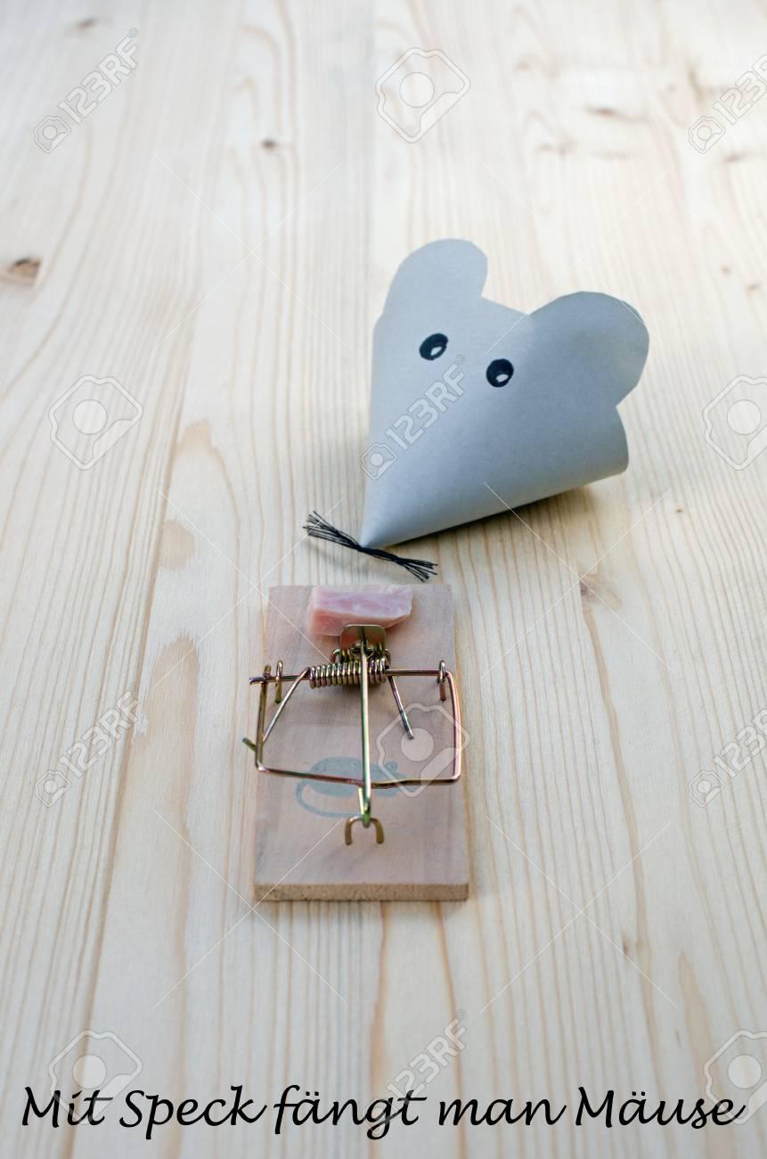 Maus Aus Papier Und Mausefalle Mit Speck Auf Holz Und Den Worten