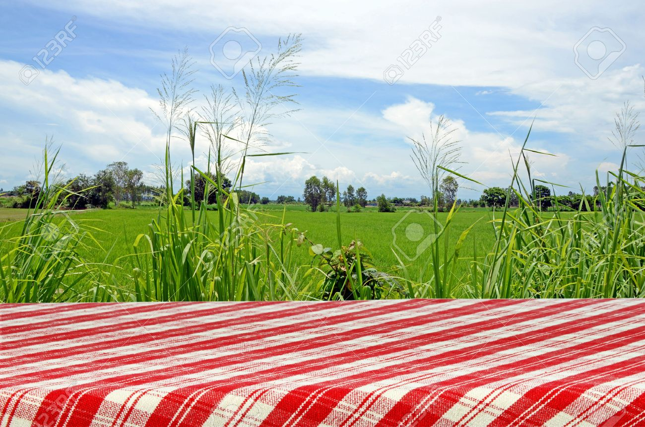 Picnic Table Background outdoor picnic background with picnic table. stock photo, picture
