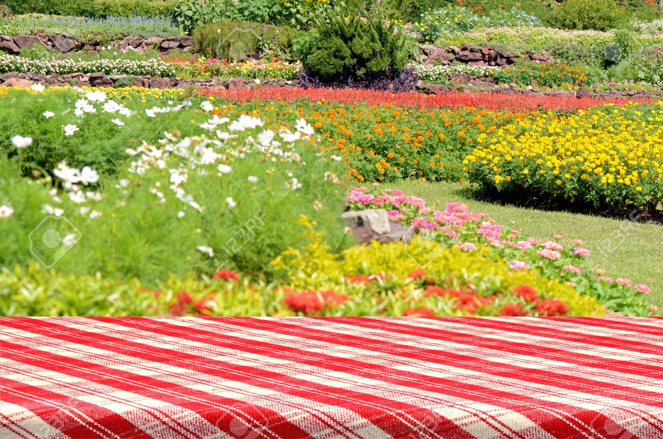 Picnic table background - Outdoor Picnic Background With Picnic Table Stock Photo 40012109