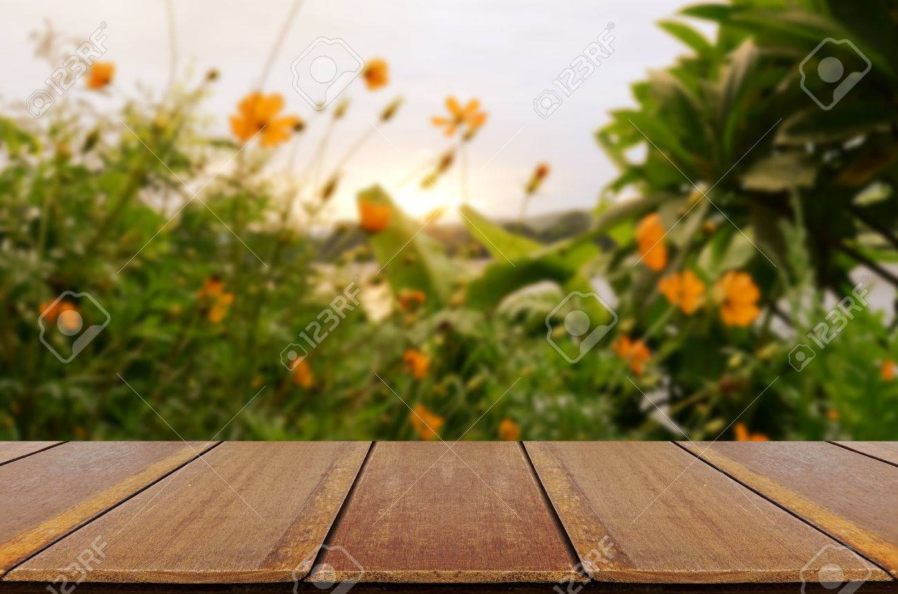 blurred vintage backyard garden background with perspective wood