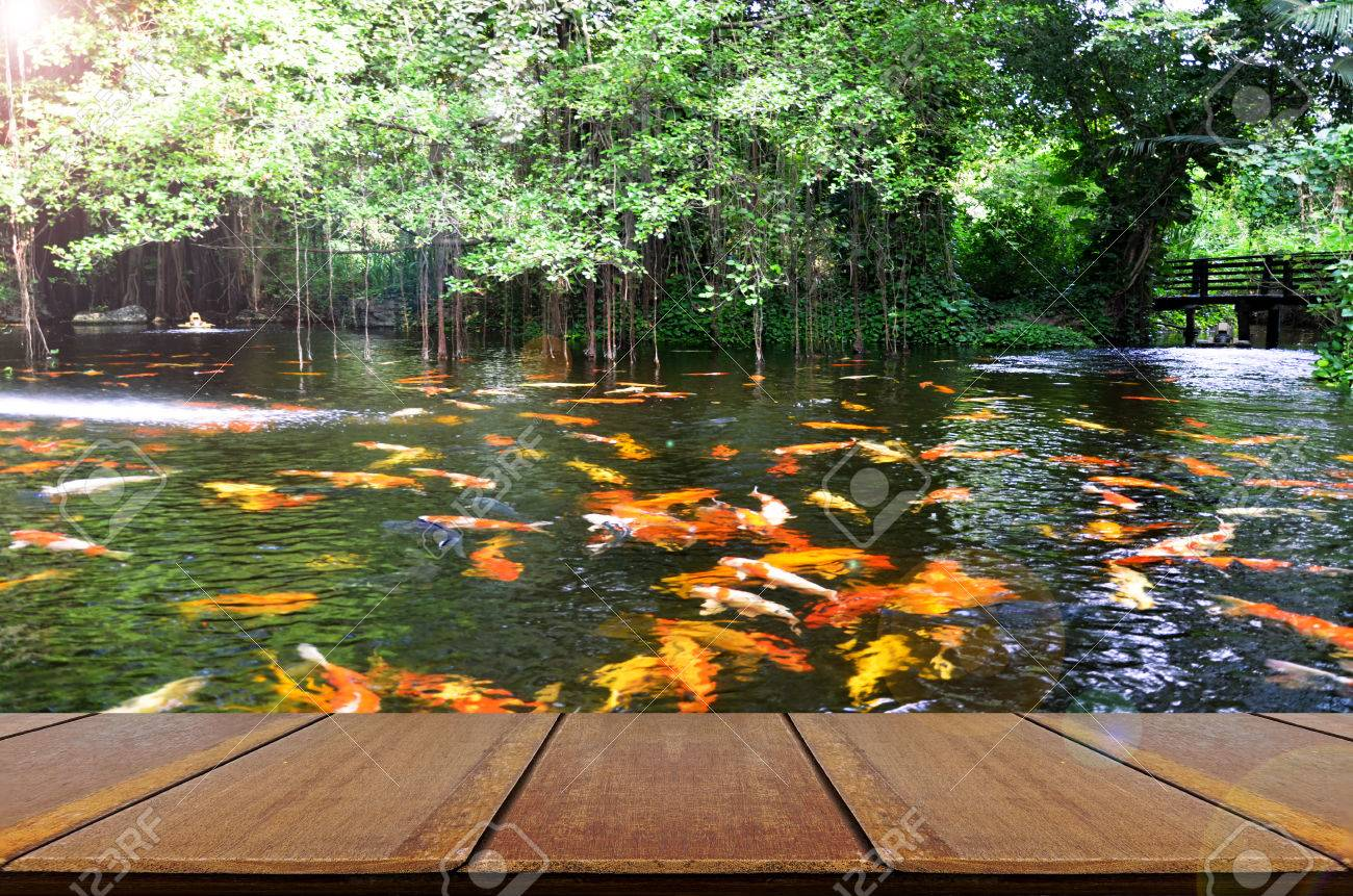 perspective wood view with backyard koi fish pond background