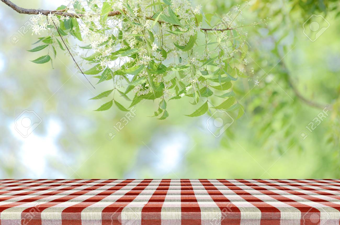 red picnic table and nature background with warm morning light
