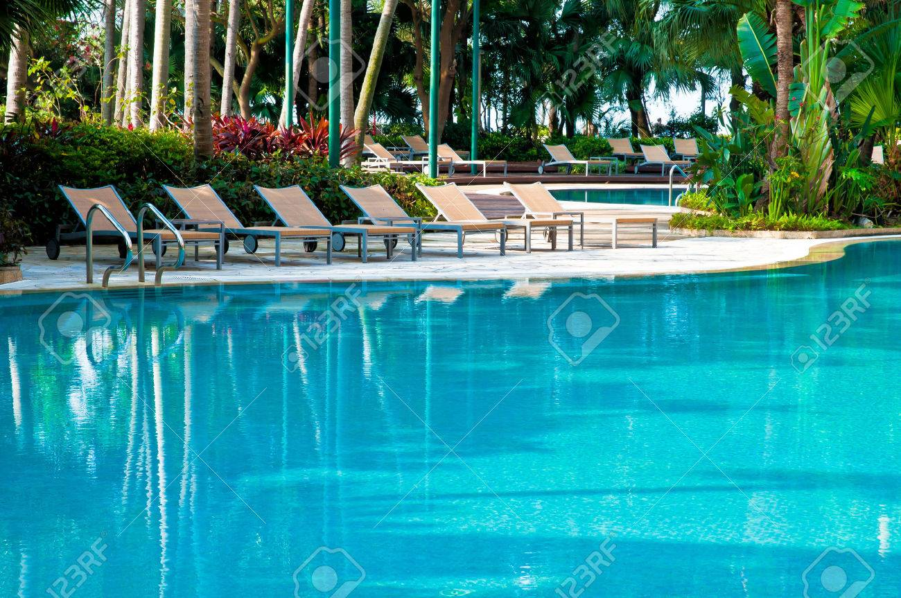 swimming pool deck chairs and palms stock photo 27500429 - Swimming Pool Deck Chairs