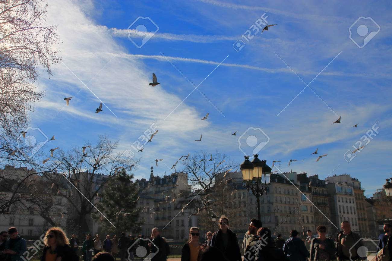 Parisians and tourists on the parvis of Notre dame cathedral in Paris, France - 122540123