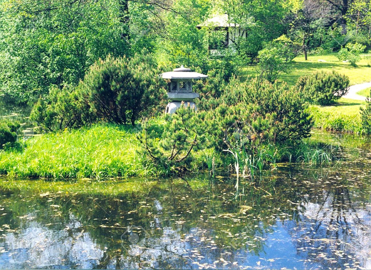 Tang du jardin japonais contre une petite lampe et une tonnelle