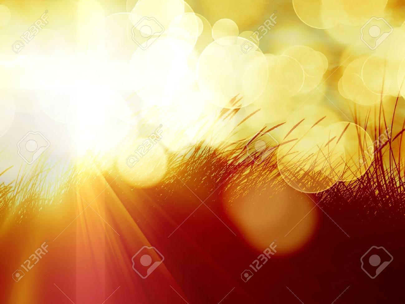 marram grass with an orange sky above Stock Photo - 5957640