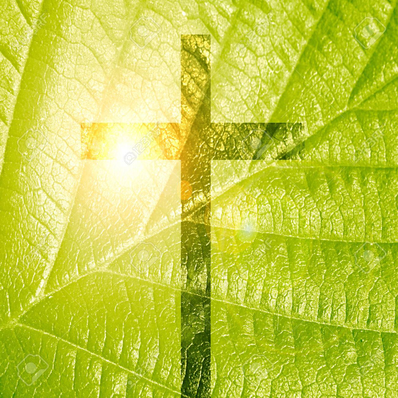 glowing christian cross on a green nature background Stock Photo - 26392761