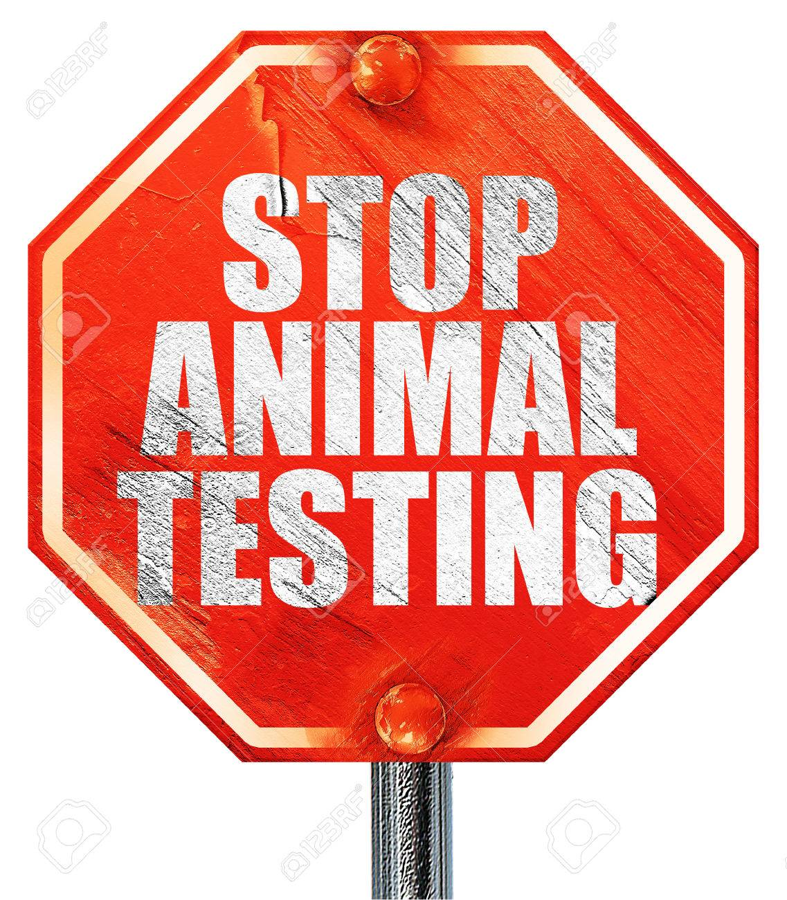 Stop Animal Testing, 3D Rendering, A Red Stop Sign Stock Photo ...