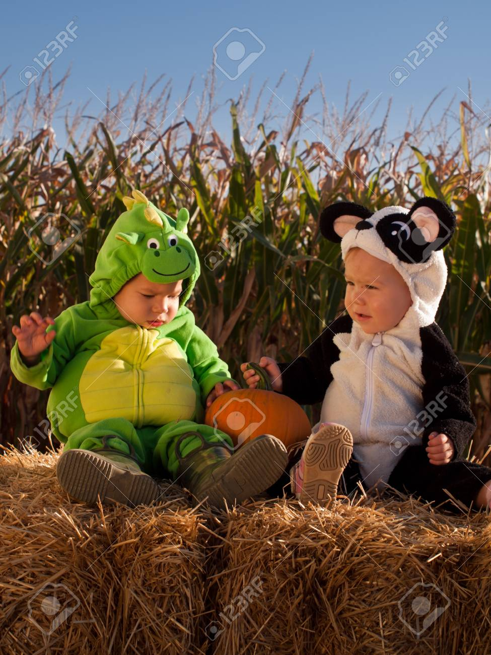 Toddlers dressed up in cute costumes at the pumpkin patch. Stock Photo - 10807197