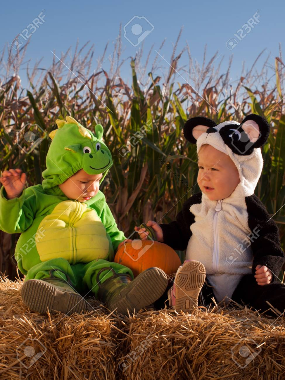 Toddlers dressed up in cute costumes at the pumpkin patch. Stock Photo - 10806944