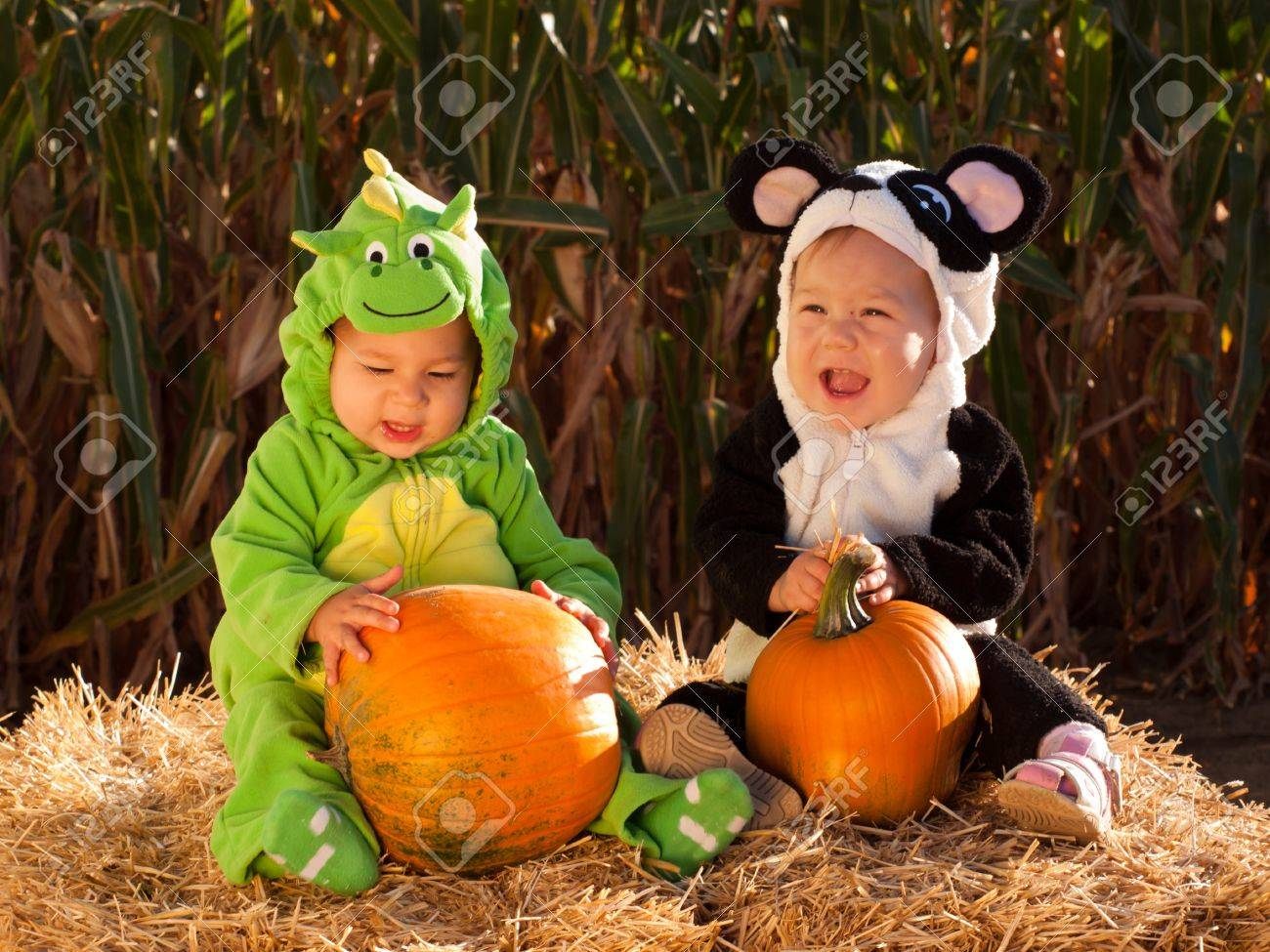 Toddlers dressed up in cute costumes at the pumpkin patch. Stock Photo - 10807056