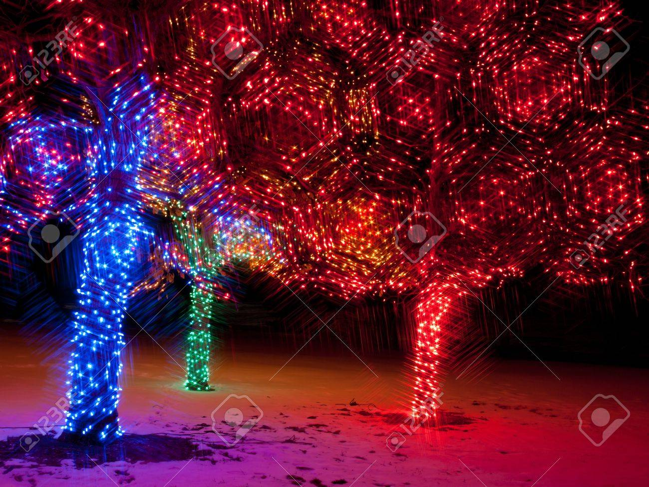 Trail Of Lights At Denver Botanical Gardens At Chatfield. Stock Photo    11491878