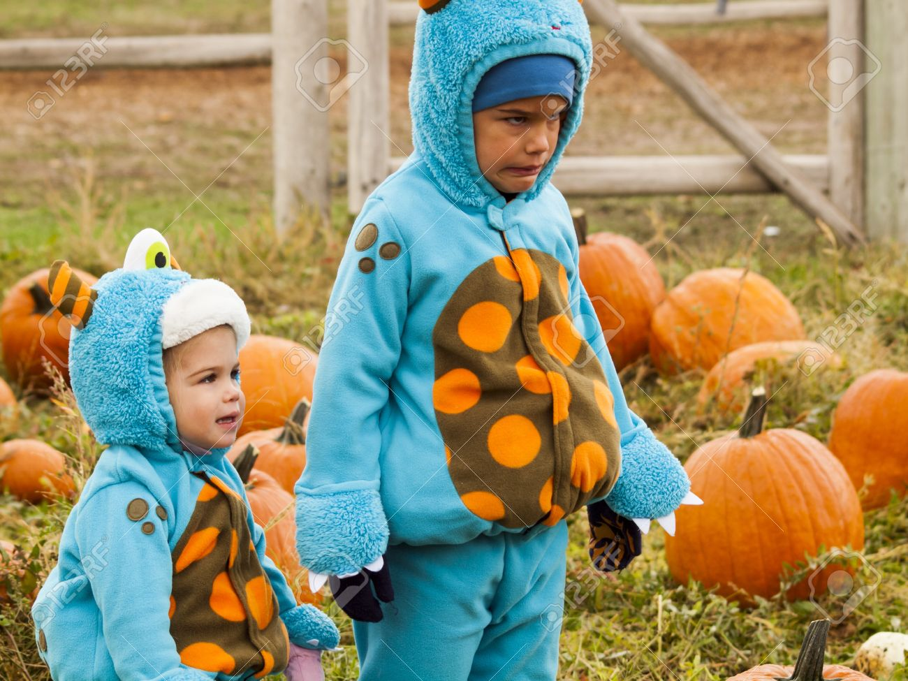 little kids in halloween costumes picking pumpkind at the pumpkin patch in aearly autumn
