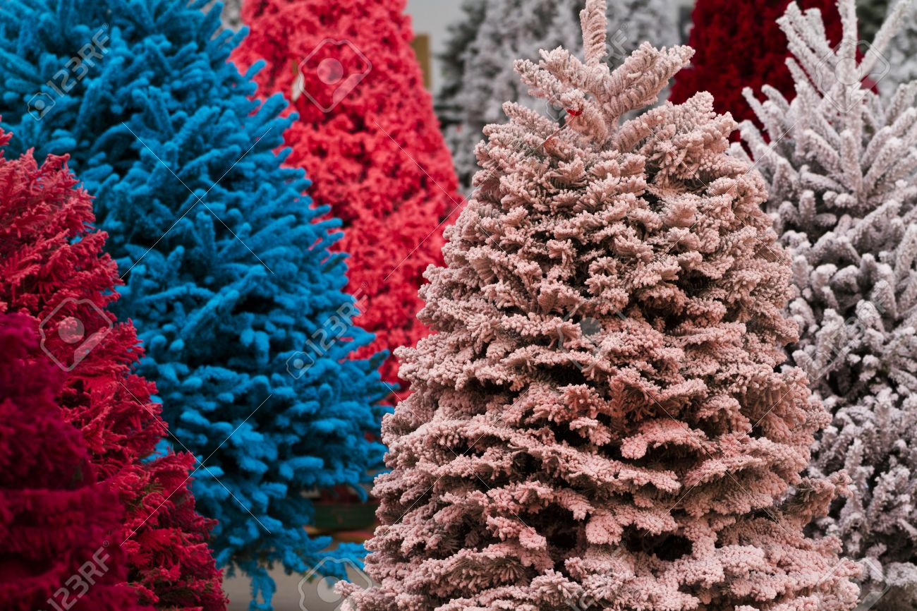 Flocked Christmas Tree Flocked Christmas Tree With Multi Colors Stock Photo Picture And