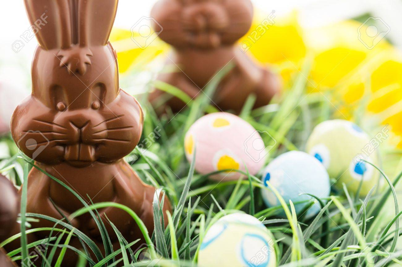 easter chocolate bunnies made from solid milk and dark chocolate