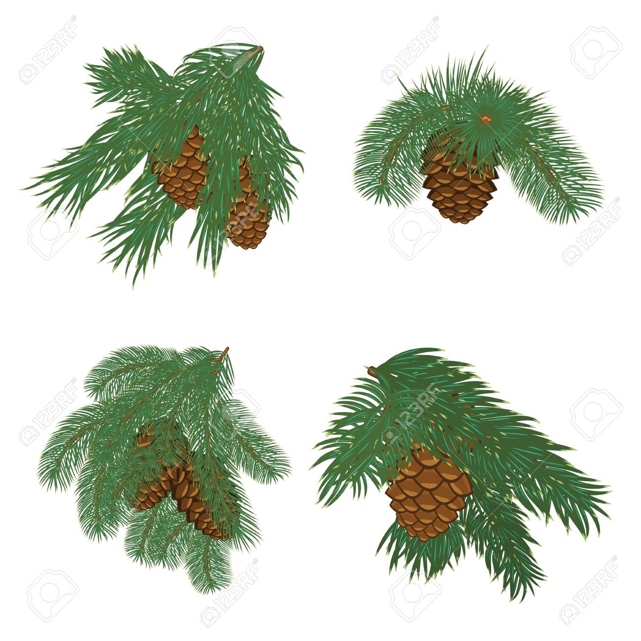 collection of christmas tree branches with pine cones stock vector 95225666 - Christmas Tree With Pine Cones