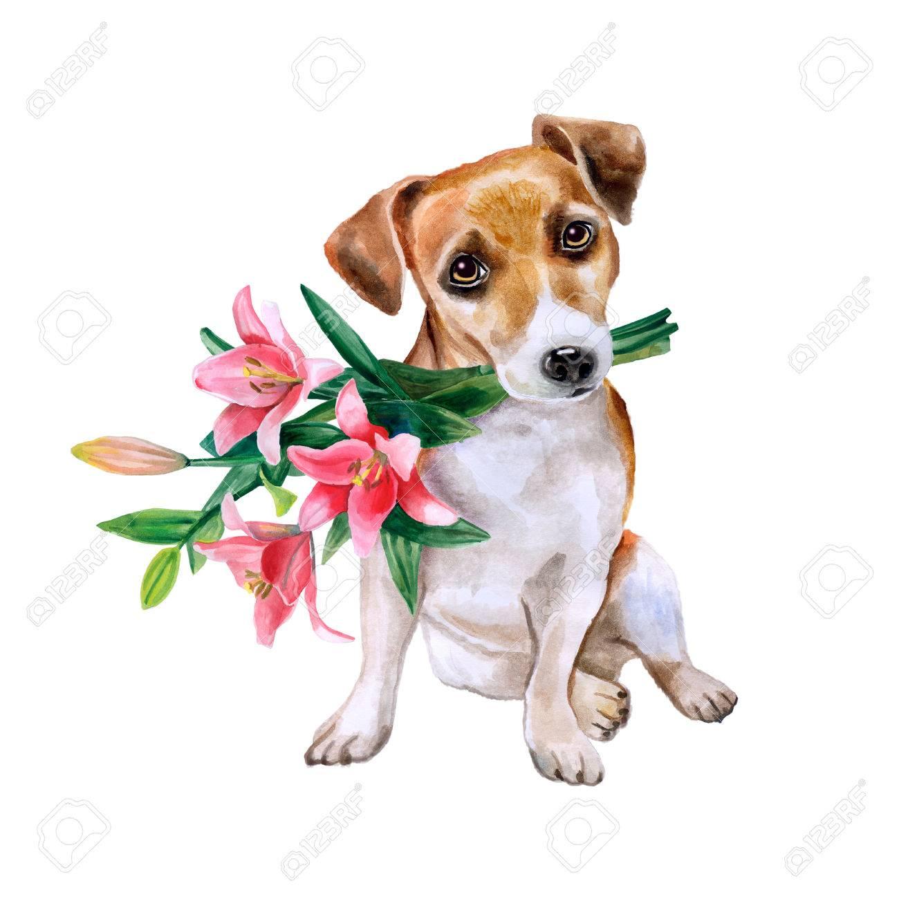 Hund Mit Blumen. Netter Welpe Mit Romantischen Blumenstrauß.  Blumen Hintergrund. Aquarell Von
